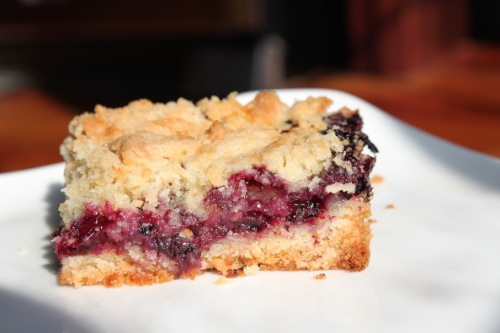 smitten kitchen blueberry crumb bars
