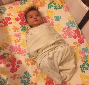 swaddle bust